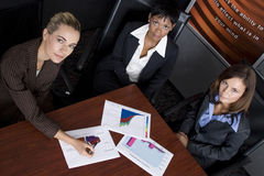 Negócio de três fêmeas Imagem de Stock