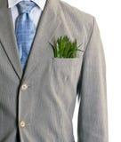 Negócio ecológico Foto de Stock