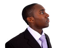 Negócio Outlooking Imagens de Stock Royalty Free
