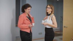 Negócio Team Coffee Break Relax Concept Os executivos dos colegas comunicam-se em um ajuste informal, rindo video estoque