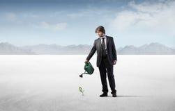 Negócio verde