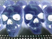 Negatieve schedels, Stock Foto