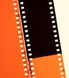 Negativa filmer Royaltyfri Bild
