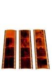 Negativas de la tira de la película Imagen de archivo libre de regalías