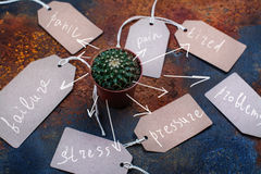 Negative emotions concept. Cactus and tags with written emotions royalty free stock image