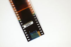 Negative film from the camera. Stock Photos