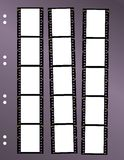 Negative film contact sheet. Blank frames, space for pix Stock Photos