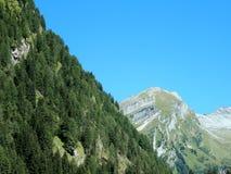 Negativo per la stampa di Cartamoneta-Adige-montagne fotografia stock