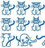 Negen gemeenschappelijke uitdrukkingen van een kat Royalty-vrije Stock Foto
