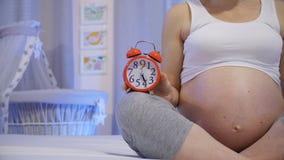 Negen Maanden van Zwangerschap stock footage