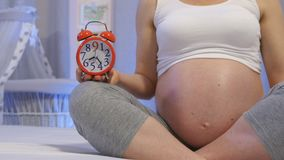 Negen Maanden van Zwangerschap stock video