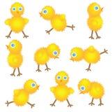 Negen nieuwsgierige kippen Stock Foto's