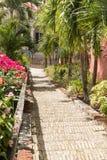 Beroemde 99 stappen Charlotte Amalie royalty-vrije stock fotografie
