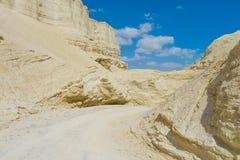 Negev öken Israel Arkivbild