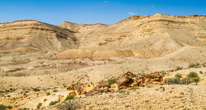 Negev desert in the early spring, Israel Stock Images