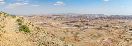 Negev desert in the early spring, Israel Royalty Free Stock Image