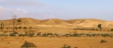 Free Negev Desert In Israel (panorama). Royalty Free Stock Photo - 13257505