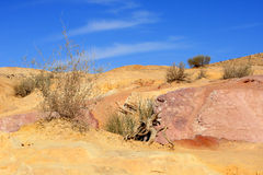 Negev Desert, Israel Royalty Free Stock Photo