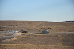 The Negev desert, Israel. Bedouin settlement of Arara Royalty Free Stock Photos