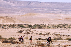 The Negev Desert - Israel Stock Photography
