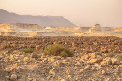Negev desert - Israel Stock Photography