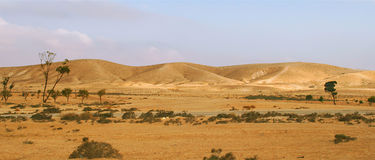 Negev Desert in Israel (panorama). Royalty Free Stock Photo