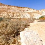 Negev Desert in Israel Stock Photography