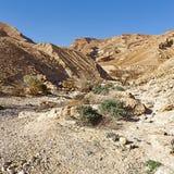 Negev Desert in Israel. Royalty Free Stock Image