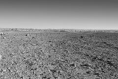 Negev Desert in Israel. Royalty Free Stock Images