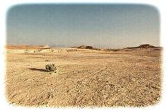 Negev Desert in Israel Royalty Free Stock Photo