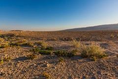 Negev desert landscape Royalty Free Stock Photo