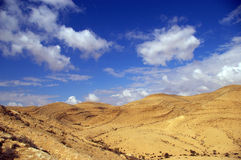 Negev Desert, Sde Boker, Israel. Landscape of Negev Desert with blue skies near Sde Boker, Israel stock images