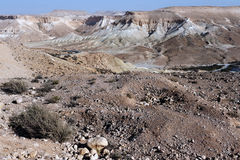 Negev Desert view of Nahal Tzin Stock Photography