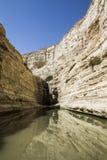 Negev flod i öknen arkivbilder