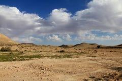 Negevwoestijn bij de lente op blauwe hemelachtergrond Stock Afbeeldingen