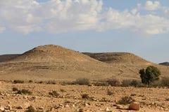 Negevwoestijn bij de lente op blauwe hemelachtergrond Stock Foto