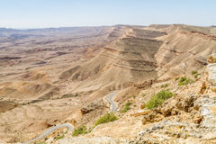 Negevwoestijn in de vroege lente, Israël Royalty-vrije Stock Afbeeldingen
