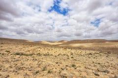 Negevwoestijn op het zuiden van Israël Stock Foto's