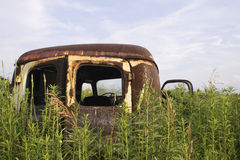 Neglected. Rusted vehicle in tall grass Royalty Free Stock Image
