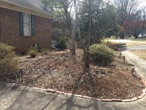 Neglected garden in winter North Carolina. TLC needed to rejuvenate an abandoned garden Royalty Free Stock Image