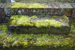 Neglected grave - Potsdam, Germany. Neglected grave with moss overgrown steps - Potsdam, Germany Royalty Free Stock Images