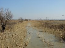 Neglected irrigation canal Royalty Free Stock Photography
