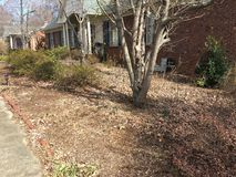 Neglected overgrown garden in the North Carolina suburbs. TLC needed to rejuvenate an abandoned garden Stock Image