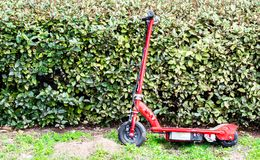 Neglected red motorized scooter leaning against green hedges. Neglected weathered red motorized scooter with black wheels leaning against a row of green hedges Stock Photos