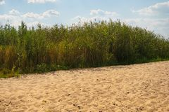 Neglected river beach Stock Photo