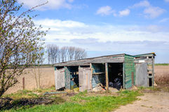 Neglected and rotten wood shed. Small dilapidated wooden barn in the Netherlands on a sunny day in the spring season Royalty Free Stock Images