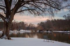 Negligenciando a lagoa no parque da liberdade Fotos de Stock Royalty Free