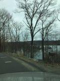 Negligenciando o lago Fotografia de Stock Royalty Free