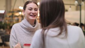 Negociações da jovem mulher ao café bebendo do amigo no café iluminado video estoque