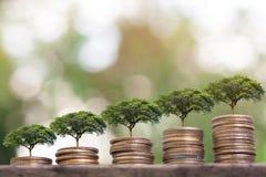 Negocio cada vez mayor de la pila de la moneda Concepto del dinero del ahorro foto de archivo libre de regalías